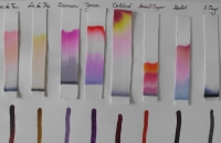 A Chromatogram, Not A Ladder image