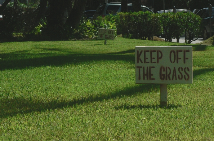 Keep Off the Grass: An Allegory image