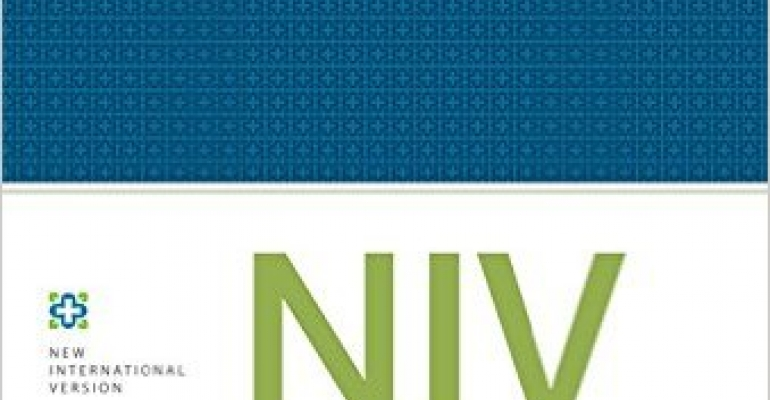 The New NIV Study Bible image